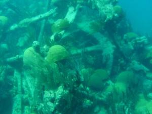 Restos de naufragios visibles durante el diving