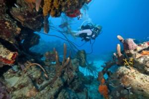 Saint Croix es la isla con más puntos de buceo.