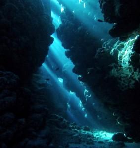 Profundos acantilados costeros en Ras Mohammed