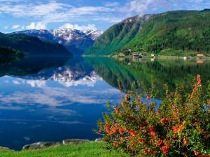 Fiordo de Hardangerfjord en Bergen