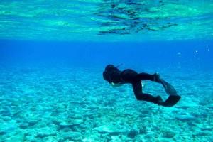 Diving en Rowley Shoals.