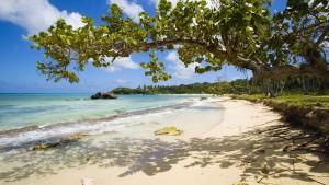 Playa Rincón, paraíso puro.