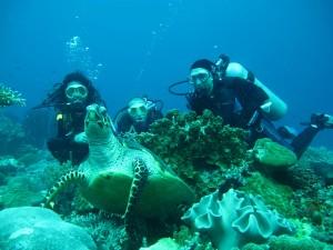 Apo Island, en Dumaguete, ofrece numerosos diving.