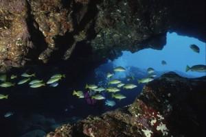 Hawai esconde numeroso túneles de lava submarinos.
