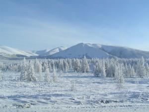 Paisaje de la Estepa Siberiana.