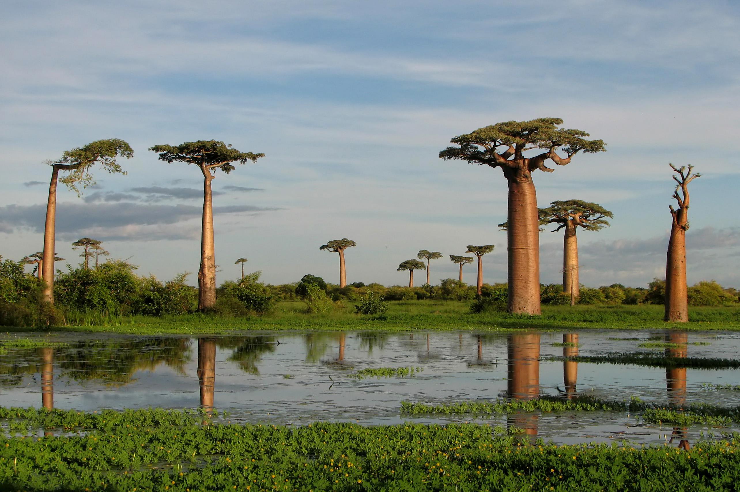 Impresionantes paisajes de Madagascar