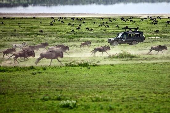Doce viajes como Tanzania