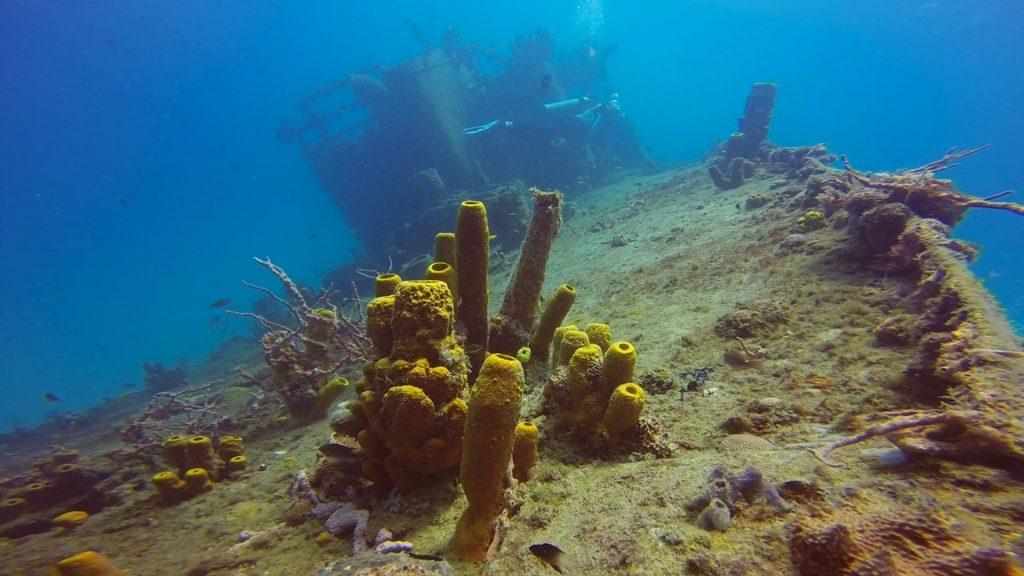 Buceo en Barbados